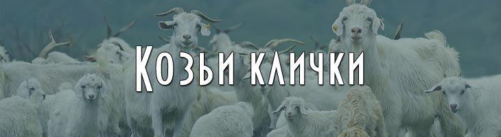 Клички для коз козлов